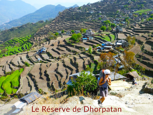 The Dhorpatan Reserve